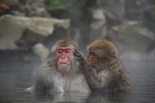 入浴など腰を温める行為と腰痛との関係性